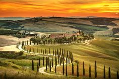 Find Tuscany Rural Sunset Landscape Countryside Farm stock images in HD and millions of other royalty-free stock photos, illustrations and vectors in the Shutterstock collection. Air France, Lucca, Kenya, Villa, Cypress Trees, Sunset Landscape, Green Fields, Going On A Trip, Italy Travel
