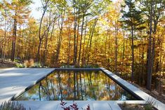 Architect Visit: Into the Woods with Drew Lang in the Hudson Valley - Gardenista