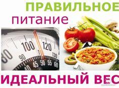 какие 4 продукта не надо есть чтобы похудеть