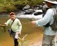 How To Fishing In The River-SenTeliTube - The Video Comunity