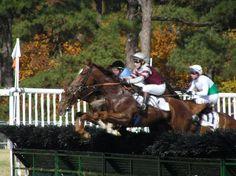 The Carolina Cup Races Camden