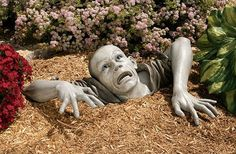 Zombie of Monclaire Moorest