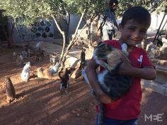 Cat sanctuary of Aleppo helps feed animals and bring joy to children  Refugiados Sírios eaf86c97d96f