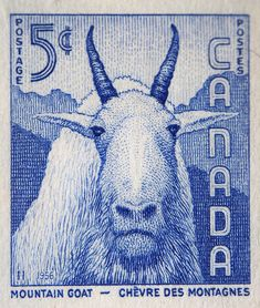 Vintage Stams form Canada! Make me thing of our Kyrgyzstan goats at Craftspring.com