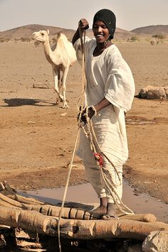 Bayuda desert ( north of modern Khatoum, Sudan ) . Bisharin nomad fetching water