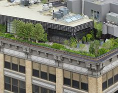Urban Penthouse in NYC by Nievera Williams Landscape Architecture