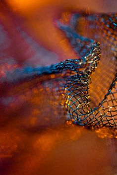 Mesh by Paul Goeth