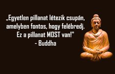 Az életünk során,sokszor van o Mafia, Cool Pictures, Buddha, About Me Blog, Wisdom, Words, Humor, Happy, Quotes