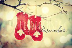 Happy December Christmas countdown starts today #ChristmasCountdown #christmas #24DaysTilChristmas