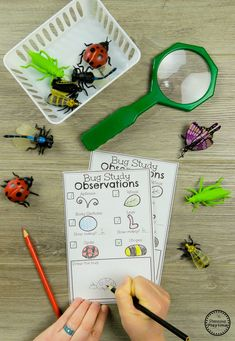 Observe Bug Attributes – Preschool Science Activities - Kids education and learning acts Insect Activities, Preschool Science Activities, Preschool Lessons, Kindergarten Activities, Preschool Activities, Educational Activities, Preschool Pictures, Science Classroom, Science Lessons