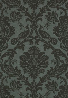 PASSARO DAMASK, Black on Charcoal, T89150, Collection Damask Resource 4 from Thibaut