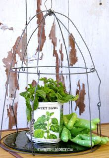 vintage-look wire dome made from a tomato cage AND a sweet tin can vase! both tutorials available at HOMEWARDfound Decor: http://homewardfounddecor.blogspot.com/2013/05/dome-it.html