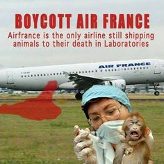 BOYCOTT Air France. They are the only airline still shipping animals to their death in laboratories. Please SIGN and share these two petitions: http://headlines.peta.org/air-france-stop-shipping-monkeys/ | and | http://forcechange.com/119951/tell-air-france-stop-transporting-primates-to-laboratories/