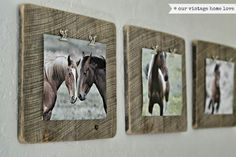 equestrian bathroom decor - Google Search