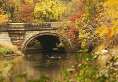 Things to See and Do - The Official Website of Central Park NYC