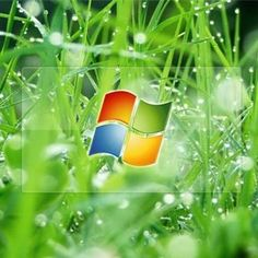Windows XP will soon be unsupported, introduce security threats