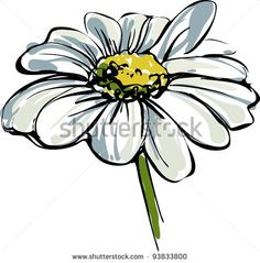 Sketch Wild Flower Resembling A Daisy Stock Vector Illustration ...