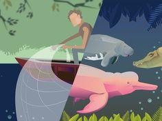 Um novo jogo gratuito online lançado por World Animal Protection pretende conscientizar crianças e adolescentes sobre os problemas da caça cruel e ilegal do boto cor-de-rosa.