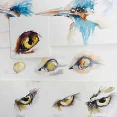 So, shall I get the awful puns out of the way now? Yes, the eyes have it. I am keeping an eye on you etc etc Seriously, watercolour is a lovely medium for capturing human or animal eyes. Its transp…