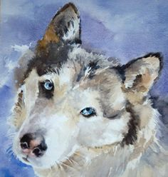 siberian husky print - original watercolor painting by the artist. $10.95, via Etsy. dianevulcan, artist original watercolor pet paintings of your pet available for $95 - dogs, cat, horses, rabbits. birds - any pet
