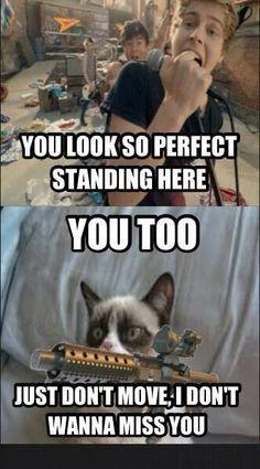 61 new ideas funny quotes sarcasm humor grumpy cat Grumpy Cat Quotes, Funny Grumpy Cat Memes, Funny Cats, Funny Memes, Hilarious, Funny Quotes, Funny Sarcasm, Videos Funny, Quotes Quotes