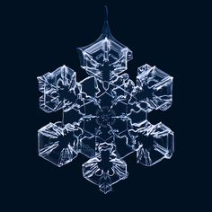 Stunning macro photography of snowflakes by Matthias Lenke.