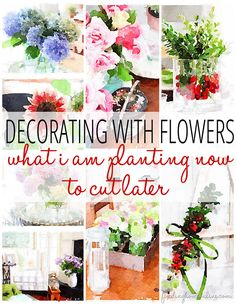 What you plant this spring can get you through till Christmas with fresh flowers and greenery to decorate your home - decorating with flowers.