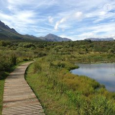 Helderberg Nature Reserve Somerset West, Nature Reserve, Cape Town, South Africa, Countries, Westerns, Things To Do, Country Roads, African