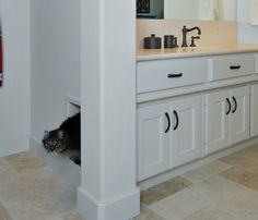 Add a pet door to make a side-entrance into a closed door space for a kitty litter box.