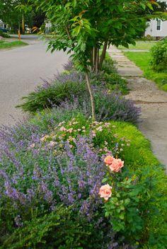 Julie Witmer Garden Design: Anastasi Side Yard garden
