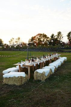 Wedding Reception Upstate Farm Dinner_Cointreau_Eyeswoon_Athena Calderone_Westwind Orchard_Jody - Exploring the tabletop and decor details from Eye-Swoon's dinner at Westwind Orchard with Cointreau and Chef Jody Williams. Wedding Trends, Wedding Tips, Trendy Wedding, Wedding Designs, Elegant Wedding, Wedding Venues, Timeless Wedding, Wedding Seating, Wedding Table