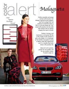 April 1, 2015 by Color Marketing Color Alert – April – Malagueta