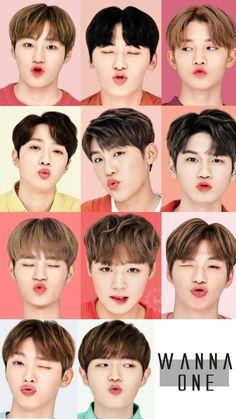 Park Jihoon dafq do you think you're doing K Pop, Jinyoung, Produce 101 Season 2, Ong Seongwoo, Kim Jaehwan, Ha Sungwoon, Second Season, Kpop Boy, Kpop Groups