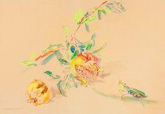 Oskar Kokoschka  Pomegranate and Praying Mantis, watercolor and gouache on board  1948