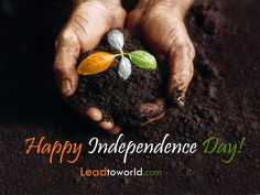 write my name on happy independence day greetings card pictures. beautiful india independence day quotes images with add test Independence Day India Images, Independence Day Hd Wallpaper, Independence Day Greeting Cards, 15 August Independence Day, Independence Day Quotes, Pakistan Independence, Fb Status, Status Quotes, Republic Day