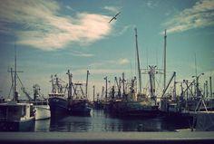 New Bedford, MA fishing port