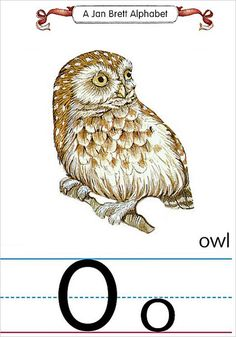 My Owl Barn: Collection: O is for Owl