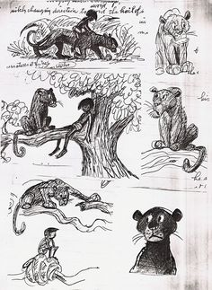 """"""" Bagheera is like your dad, always sensible and concerned, while Baloo is like your crazy uncle. Bill Peet scribbled these terrific early. Animation News, Disney Animation, Dreamworks Animation, Disney Concept Art, Disney Fan Art, Disney Drawings, Cartoon Drawings, Conceptual Sketches, Art Sketches"""