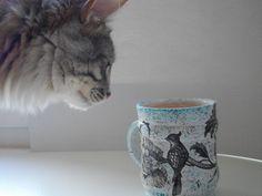 кот и хендмэйд