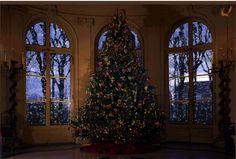 Christmas-Tree-Scene.gif gif by crazybabyborgs | Photobucket