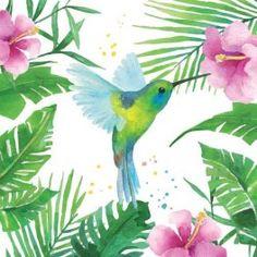 Ubrousky Tropical Kolibřík
