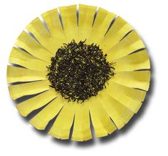 paper-plate sunflower with loose tea for center or make another version with sunflower seeds for center