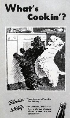 Scottish Terriers and collections