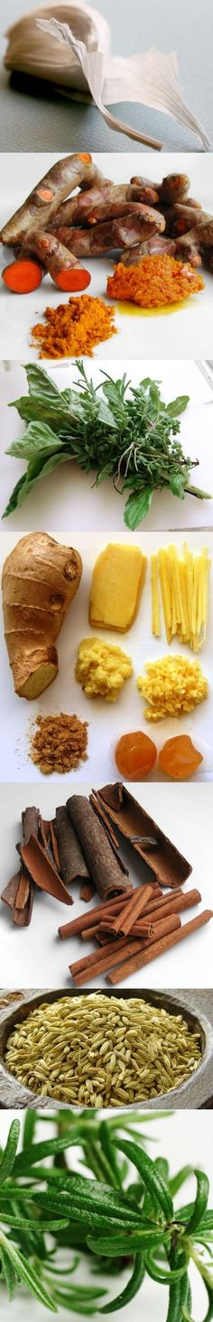 Healing Herbs: Garlic, turmeric, basil, ginger, cinnamon, fennel, rosemary These are my holy seven, but I also believe in cinnamon and cayenne.
