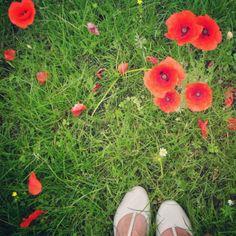 L'armadio del delitto - blog vintage e moda retro: Joli mois de mai Poppies!