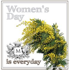#Lebanon #Beirut #Jounieh #Achrafieh #Dbayeh  Buona Festa della Donna!!! Happy women's day!!!  In Italy on the 18th of March to celebrate the women day , each man gives yellow mimosas to his woman.  Margherita's staff wishes women a special day and a beautiful life, full of joy and happiness  https://www.facebook.com/photo.php?fbid=350000431770491=a.116611208442749.16094.102177633219440=1