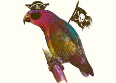 """Parrot Pirate"" - Threadless.com - Best t-shirts in the world"