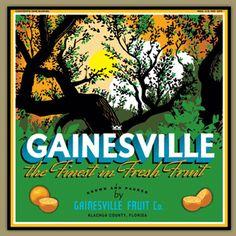 Gainesville Fruit Co - Gainesville alternate  design