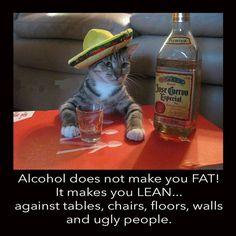Top 10 Alcohol Memes — Tipsy Bartender