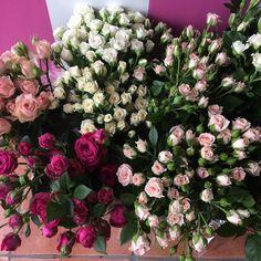 Spray roses #sprayroses #marketflowers #roses by northsideflowermarket